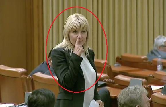 elena udrea - gest mafiot - camera deputatilor