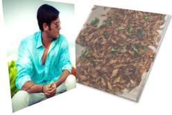 Radu Vâlcan se hrăneşte cu gândaci în Thailanda