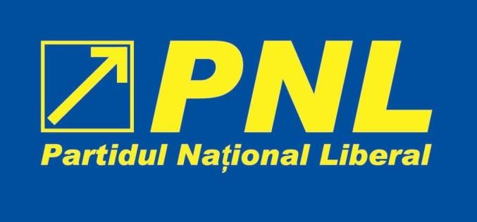PNL cere alegeri anticipate din cauza votului în cazul lui Șova