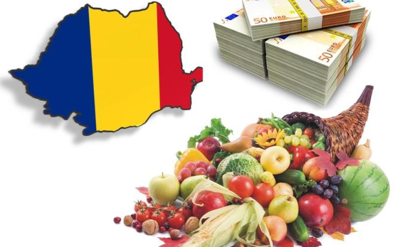 Agricultura intensivă din România, efect negativ asupra deșertificării