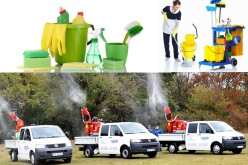 Firmele din România care oferă servicii curățenie și deratizare, reunite pe un singur site