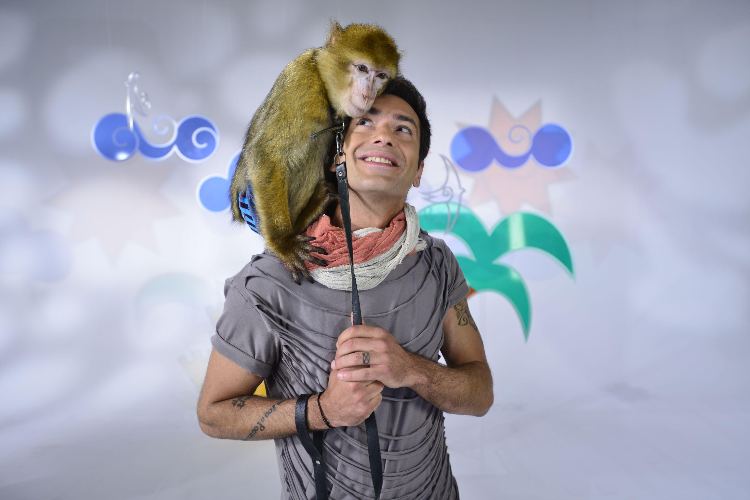 radu valcan - maimuta