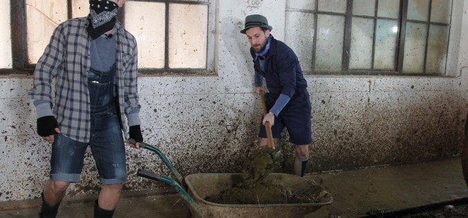 Răzvan Simion și Dani Oțil au ajuns la coada vacii. Matinalii au rănit în grajdul vacilor
