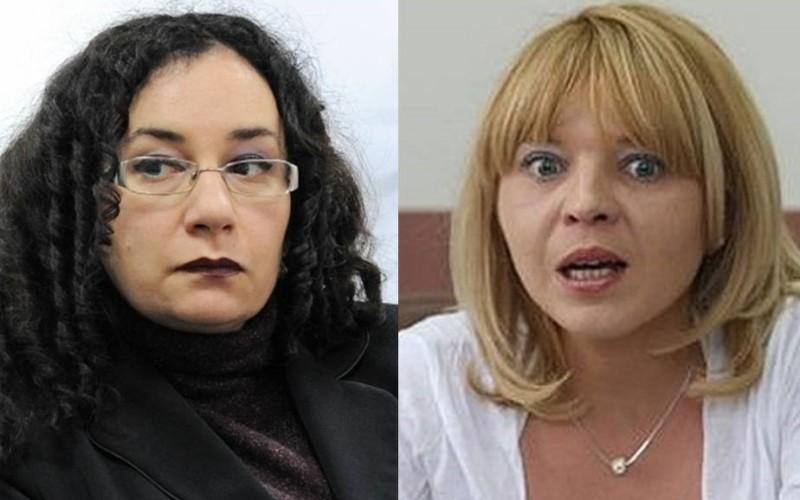 Alina Ghica și Oana Hăineală au redactat erata CCR cu ajutorul căreia Băsescu a rămas președinte