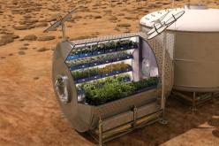 Adio conserve. Astronauții vor mânca salată plantată şi crescută pe Staţia Spaţială Internaţională