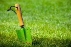 Trucuri şi sfaturi de la profesionişti pentru întreţinerea gazonului