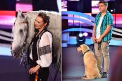 """Un cal dansator, un câine matematician și patru peruși de peste Prut, vedete la """"Ham talent"""""""