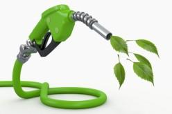 Biocarburanții poluează mai rău mediul decât petrolul