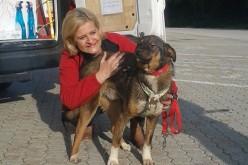 O companie românească s-a specializat în transportul internațional de câini și pisici