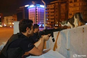 Fotografia ZILEI în Turcia | O pisică a oprit lovitura de stat a armatei!
