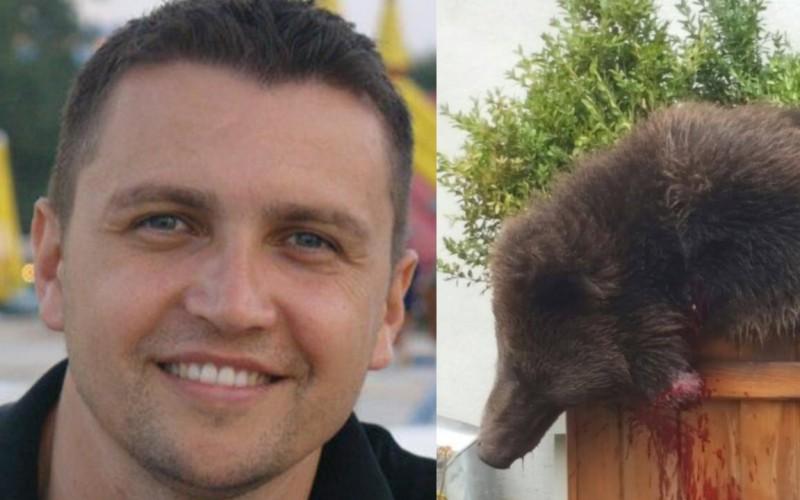 Polițistul care a dat ordin pentru ca puiul de urs să fie împușcat la Sibiu, a demisionat
