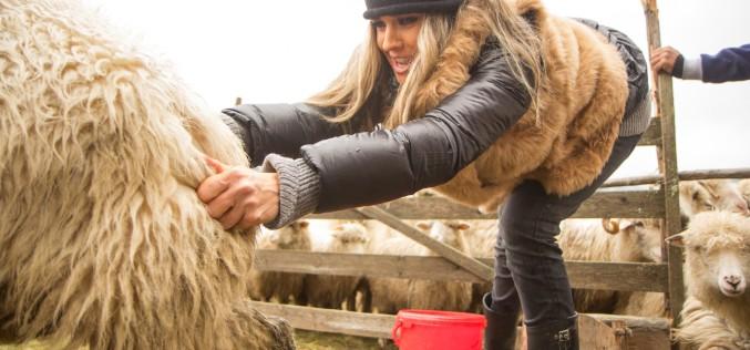 Diana Munteanu, pusă la munca câmpului de Nea Mărin