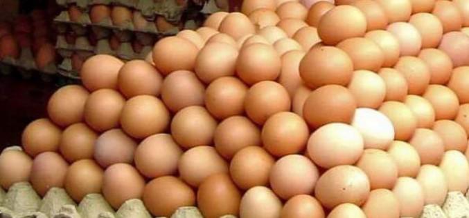 Comercianții otrăvesc românii. Au importat peste 300.000 de ouă cu salmonella din Polonia
