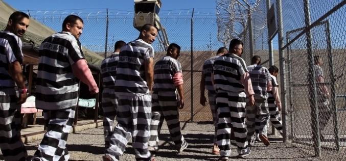 Legea grațierii ar elibera din închisori peste 3700 de persoane