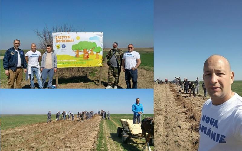 În timp ce alții defrișează, Noua Românie pune umărul la reîmpădurirea României