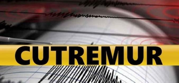 Un cutremur s-a produs în România, în zona seismică Vrancea