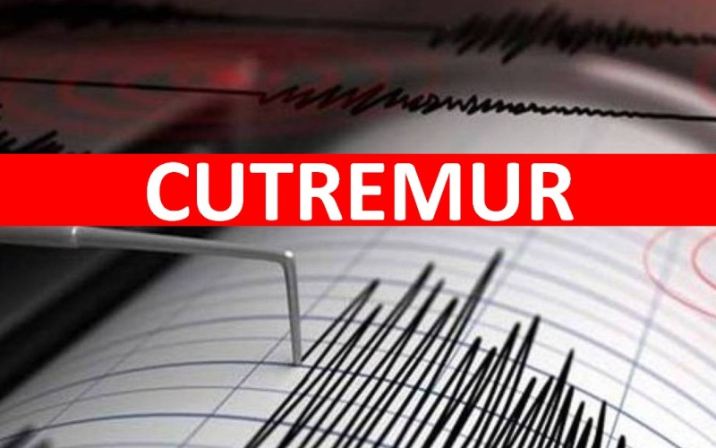 Un nou cutremur puternic s-a produs în România. Iată ce intensitate a avut