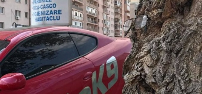 Service Auto K9 recomanda: verifica-ti masina la sfarsit de vara!