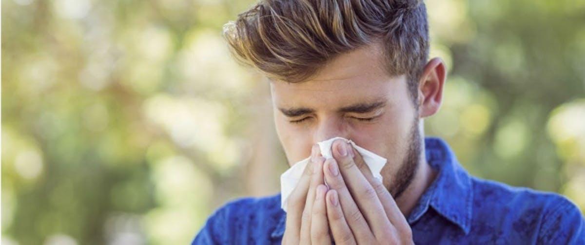 alergie polen