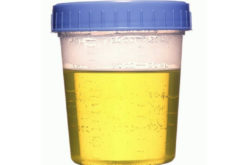 "5 Things that makes Synthetic urine ""real"""