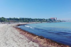Veşti bune pentru turişti. Plajele au fost curățate și pregătite pentru începerea minivacanței de Rusalii