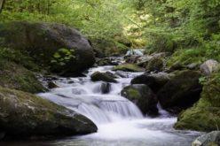 Râurile de munte, trecute de Guvern sub protecţie naţională
